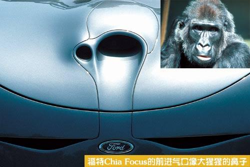 汽车设计中的仿生学